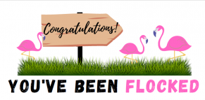Congratulations You've been flocked